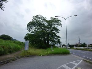 一里塚 (1)