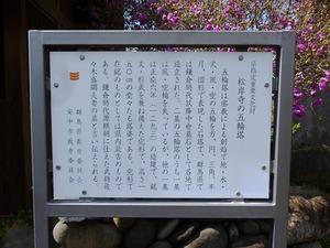 松岸寺 五輪塔 (2)