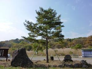 国定忠治 とまどいの松 (3)