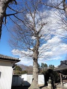 伊勢島神社 (6)