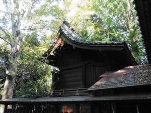 堀口飯玉神社 (4)