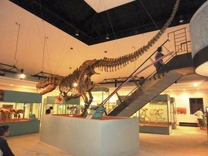 恐竜センター (3)