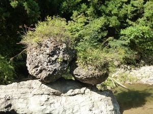 夫婦岩 (3)