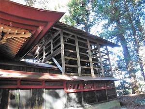 金井一宮神社 (6)