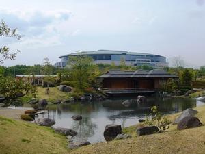 前橋公園・日本庭園 (8)