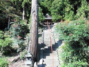 若伊香保神社 (6)