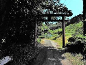 千石稲荷神社 (1)