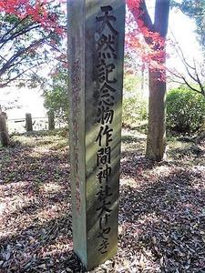 作間神社 (10)