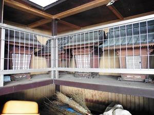 勝山神社 (7)