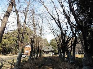 長柄神社 (4)