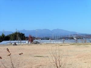西鹿田中島遺跡 (8)