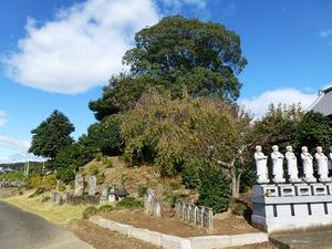 長円寺 (6)