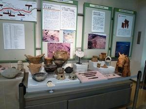 埋蔵文化財調査センター (5)