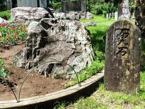 貫前神社前公園 (7)