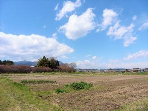 桃井城跡 (7)
