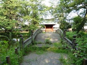 蓮池と渡月橋 (1)