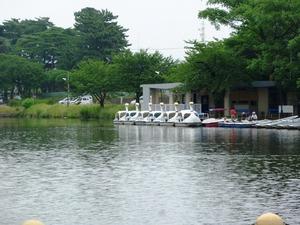 敷島公園 (6)