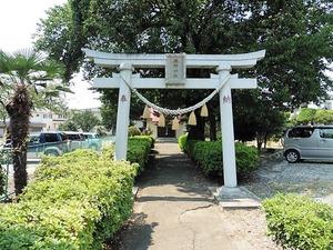 井野神社 (1)