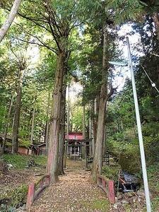 川戸浅間神社 (3)