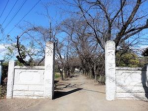 金蔵院 (1)