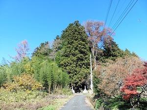 佐奈神社 (1)