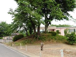 桜塚古墳 (1)
