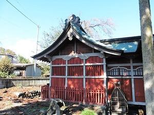 金井八坂神社 (5)