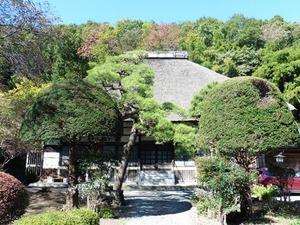 長徳寺 (2)