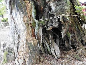 川田神社 (8)
