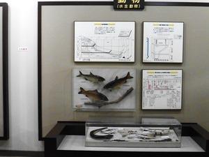 榛名ビジターセンター (6)