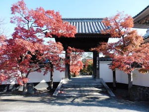 泉蔵寺 (2)