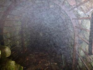わしの巣風穴 (5)
