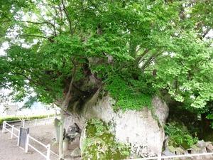 岩神稲荷神社 (1)