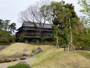 前橋公園・日本庭園 (3)
