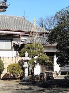 円福寺 (5)