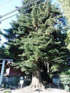 黒髪山神社 (2)