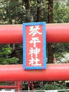 三波川琴平神社 (4)