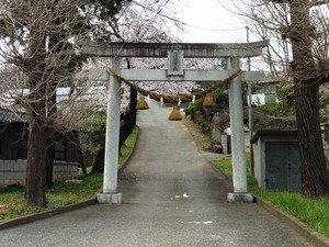 神田浅間神社 (1)