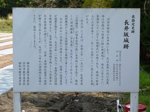 長井坂城跡 (4)