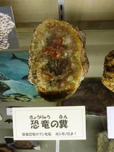 大間々博物館 (4)