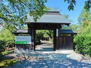 花台寺 (1)