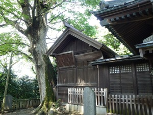 琴平神社 (6)