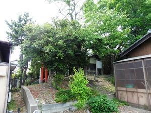 胴塚稲荷神社 (4)