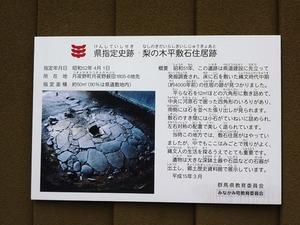 梨の木平敷石住宅跡 (2)