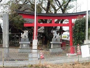 長沼八幡神社 (1)