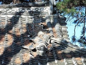 宿大類町熊野神社 (6)