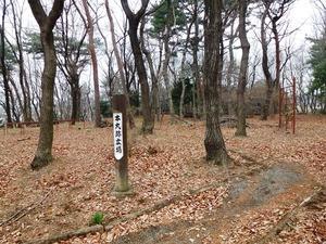 山上城址公園 (3)