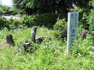 吉田芝渓の墓 (5)