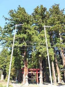 三島鳥頭神社 (1)
