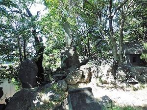 橳島飯玉神社 (7)